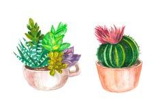 άνευ ραφής σχέδιο watercolor των κάκτων και succulents αρχαίο watercolor εγγράφου ανασκόπησης σκοτεινό κίτρινο στοκ εικόνες