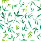 Άνευ ραφής watercolor σχεδίων των πράσινων φύλλων μπαμπού, απεικόνιση φυτών ζωγραφικής διανυσματική απεικόνιση