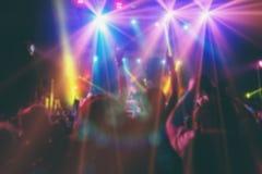 Άνθρωποι που έχουν τη διασκέδαση στη συναυλία στοκ εικόνα με δικαίωμα ελεύθερης χρήσης