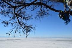 Άνοιξη στη λίμνη Baikal στη Σιβηρία στοκ φωτογραφίες