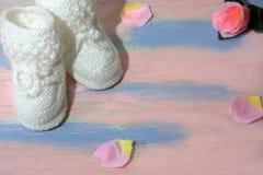 Άσπρες πλεκτές λείες παπουτσιών μωρών σε έναν ρόδινος-μπλε ξύλινο πίνακα με με τα ροδαλά πέταλα Νεογέννητη έννοια ανακοίνωσης στοκ εικόνα με δικαίωμα ελεύθερης χρήσης