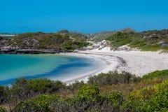 Άσπρη άμμος στον κόλπο δυναμίτη στο πράσινο κεφάλι στη δυτική ακτή της Αυστραλίας στοκ εικόνες