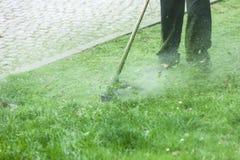 Άτομο που κόβει την πράσινη χλόη που χρησιμοποιεί brushcutter στοκ φωτογραφία με δικαίωμα ελεύθερης χρήσης