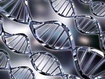 έλικες DNA διανυσματική απεικόνιση