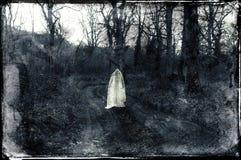 Ένας απόκοσμος πνευματικός άσπρος αριθμός που στέκεται σε μια πορεία σε ένα δάσος το χειμώνα Με ένα grunge, εκλεκτής ποιότητας γρ στοκ φωτογραφία με δικαίωμα ελεύθερης χρήσης