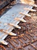 Ένας κάδος και δόντια σε έναν ολίσθηση-ταύρο στοκ φωτογραφία με δικαίωμα ελεύθερης χρήσης