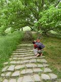 Ένα κορίτσι παίρνει τις εικόνες στα εκλεκτής ποιότητας βήματα καμερών στο πράσινο πάρκο στοκ φωτογραφίες