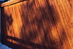 Ένα δέντρο πετά τις σκιές ενάντια σε έναν ξύλινο φράκτη στοκ φωτογραφία
