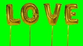 Αγάπη λέξης από τις χρυσές επιστολές μπαλονιών ηλίου που επιπλέουν στην πράσινη οθόνη - απόθεμα βίντεο