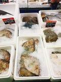 Αγορά Παρίσι ψαριών στοκ εικόνα