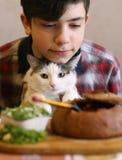 Αγόρι εφήβων με την αστεία χαριτωμένη γάτα που τρώει το γεύμα - ρωσικό borsch σούπας beatroot με το isoaltee φωτογραφιών sourcrea στοκ εικόνες
