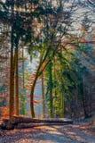 Ακτίνες ήλιων Clour στοκ εικόνα με δικαίωμα ελεύθερης χρήσης