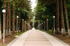Αλέα στο πάρκο στοκ φωτογραφία με δικαίωμα ελεύθερης χρήσης