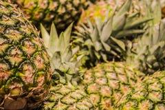 ανασκόπηση ή σύσταση ανανάς καρπού τροπικός Καλοκαίρι και εξωτικός Βιταμίνες και χρήσιμα φρούτα Τρόφιμα αγορά στοκ φωτογραφίες με δικαίωμα ελεύθερης χρήσης