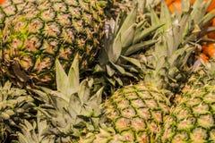 ανασκόπηση ή σύσταση ανανάς καρπού τροπικός Καλοκαίρι και εξωτικός Βιταμίνες και χρήσιμα φρούτα Τρόφιμα αγορά στοκ εικόνες