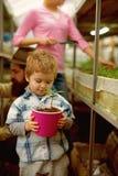 αναπτύξτε το φυτό το μικρό αγόρι με τη μητέρα αυξάνεται τις εγκαταστάσεις προσοχή εγκαταστάσεων το παιδί αυξάνεται το οικογενειακ στοκ εικόνα