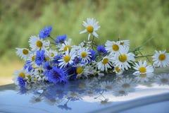 Ανθοδέσμη των μαργαριτών και των cornflowers στοκ φωτογραφίες