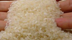 Ανθρώπινο χέρι που παίρνει το τσίμπημα του ακατέργαστου ρυζιού απόθεμα βίντεο