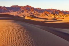 Ασβέστιο ΗΠΑ του NP κοιλάδων θανάτου αμμόλοφων άμμου Mesquite στοκ φωτογραφία