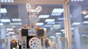 Αστείος χειροποίητος χορός κουνελιών ρομπότ φιλμ μικρού μήκους