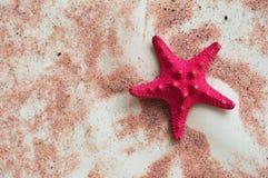 Αστερίας στην άμμο σε ένα ελαφρύ υπόβαθρο στοκ φωτογραφία με δικαίωμα ελεύθερης χρήσης