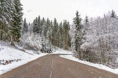 Ασφαλής και τακτοποιημένος χειμερινός δρόμος στοκ εικόνες