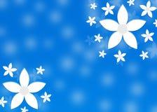 Αφηρημένα άσπρα λουλούδια στο μουτζουρωμένο μπλε υπόβαθρο στοκ φωτογραφία