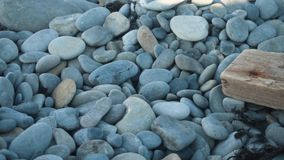αφηρημένες πέτρες ανασκόπη& Χαλίκια, αφηρημένο υπόβαθρο ακτών με τις πέτρες απόθεμα βίντεο