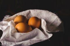 Αυγά κοτόπουλου σε ένα μαύρο υπόβαθρο στοκ εικόνες