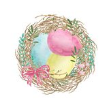 Αυγά Πάσχας Watercolor στη φωλιά διανυσματική απεικόνιση