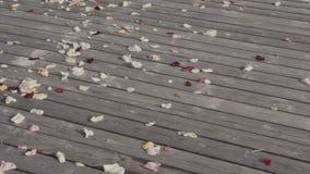 Αυξήθηκε πέταλα στο ξύλινο πάτωμα ευτυχής εκλεκτής ποιότητας γάμος ημέρας ζευγών ιματισμού απόθεμα βίντεο