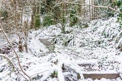 Βήματα ιχνών στο χιόνι στοκ εικόνες με δικαίωμα ελεύθερης χρήσης
