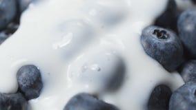 Βακκίνια στο οργανικό γιαούρτι Το γιαούρτι χύνει τα βακκίνια Κινηματογράφηση σε πρώτο πλάνο απόθεμα βίντεο