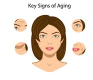 Βασικά σημάδια της γήρανσης, διανυσματική απεικόνιση που απομονώνεται απεικόνιση αποθεμάτων