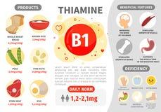 Βιταμίνη B1 Infographics διανυσματική απεικόνιση