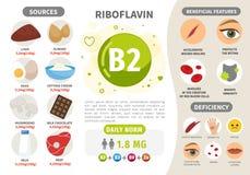 Βιταμίνη B2 Infographics απεικόνιση αποθεμάτων