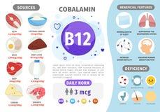 Βιταμίνη B12 Infographics διανυσματική απεικόνιση