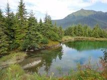 Βουνό Alaskian στο υπόβαθρο της λίμνης στην άκρη ενός συγκρατημένου τροπικού δάσους στοκ εικόνες με δικαίωμα ελεύθερης χρήσης