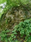 Βράχος, που εισβάλλεται με το βρύο σε μια πράσινη βουνοπλαγιά στοκ εικόνες