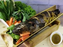 Βρασμένα στον ατμό ψάρια στο μπαμπού, ταϊλανδικά τρόφιμα στοκ εικόνα με δικαίωμα ελεύθερης χρήσης