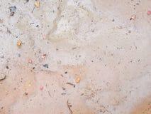 Βρώμικη ξηρά αλατούχος επιφάνεια εδαφολογικού Grunge με ένα φύλλο Αφηρημένη έννοια Backgroud στοκ εικόνες