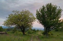 Βρώμικος δρόμος στον άγνωστο στοκ εικόνα με δικαίωμα ελεύθερης χρήσης