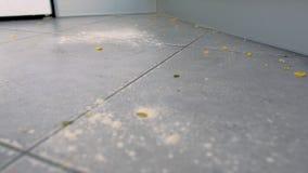 Βρώμικο πάτωμα κουζινών με τα περισσεύματα τροφίμων, αλεύρι, νιφάδες καλαμποκιού μετά από να μαγειρεψει στενό χρωμάτων ύδωρ όψης  απόθεμα βίντεο