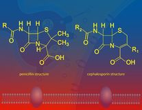 β-lactam antibiotics Royalty Free Stock Photo