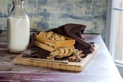 Γάλα και σοκολάτα μπισκότων στοκ εικόνες με δικαίωμα ελεύθερης χρήσης