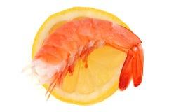 Γαρίδες σε μια φέτα του λεμονιού στοκ εικόνα