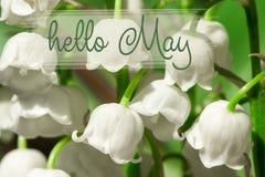 Γειά σου γράφοντας κάρτα Μαΐου Κρίνοι της κοιλάδας στοκ εικόνα με δικαίωμα ελεύθερης χρήσης