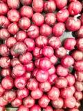 Γλυκό κόκκινο δαμάσκηνο στοκ εικόνα
