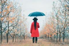 Γυναίκα στο κόκκινο παλτό και με την ομπρέλα μεταξύ των δέντρων στον κήπο μήλων στην εποχή φθινοπώρου Μινιμαλισμός, ταξίδι, έννοι στοκ φωτογραφίες