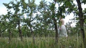 Γυναίκα που απολαμβάνει τον πράσινο οπωρώνα περιπάτων την άνοιξη φιλμ μικρού μήκους